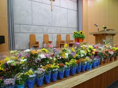 校長のつぶやき(32)花の日礼拝